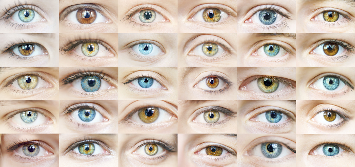 A photo collage of different human eyes of various colors